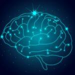 É verdade que só usamos 10% do cérebro?